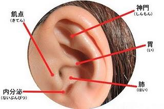耳つぼの画像